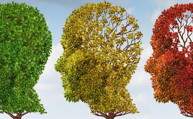 bigstock-Brain-Aging-46500448