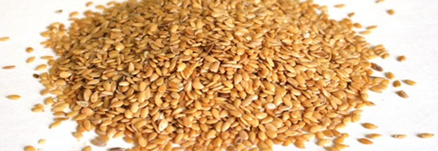 Flax-Seeds-1