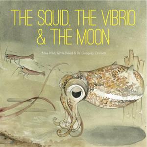squid-vibrio-moon