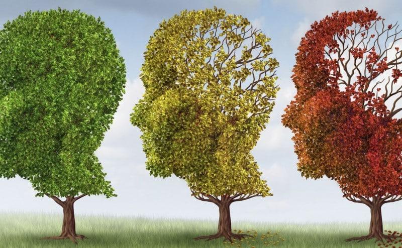 20141205-vitals-brainaging-181156970