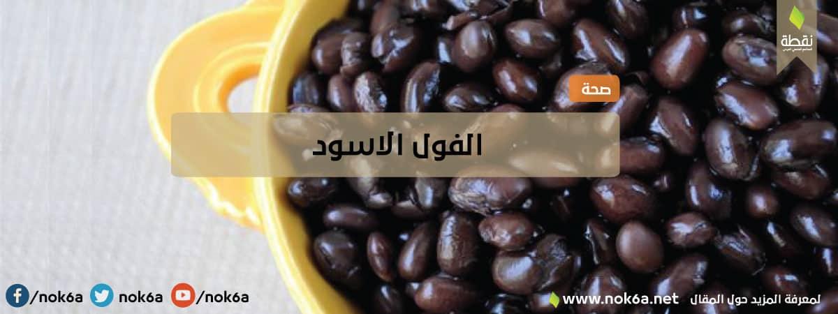 الفول-السوداني