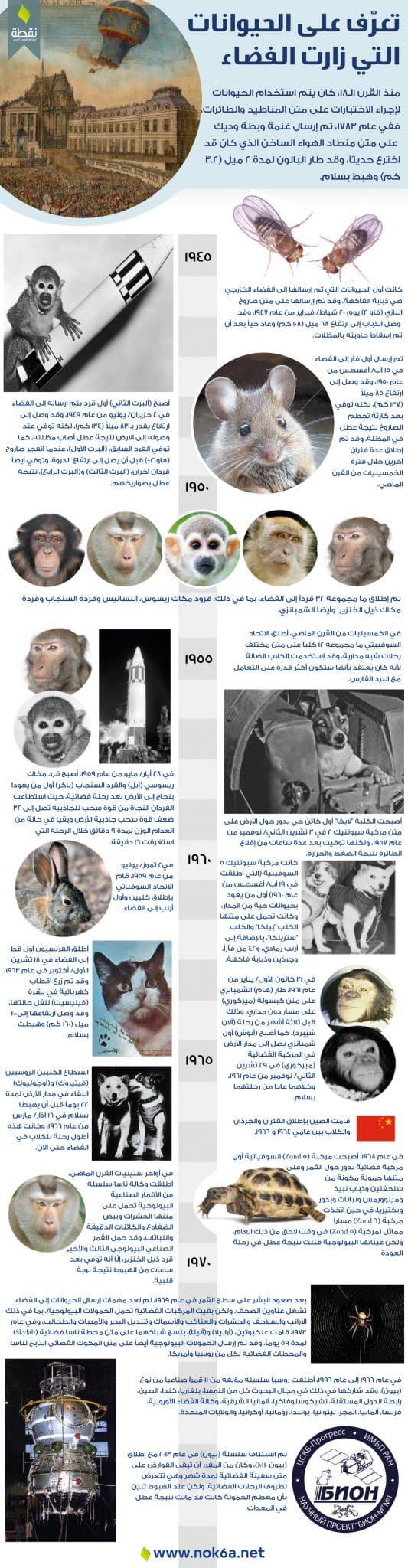 انفوغراف-الحيوانات-التي-زارت-الفضاء